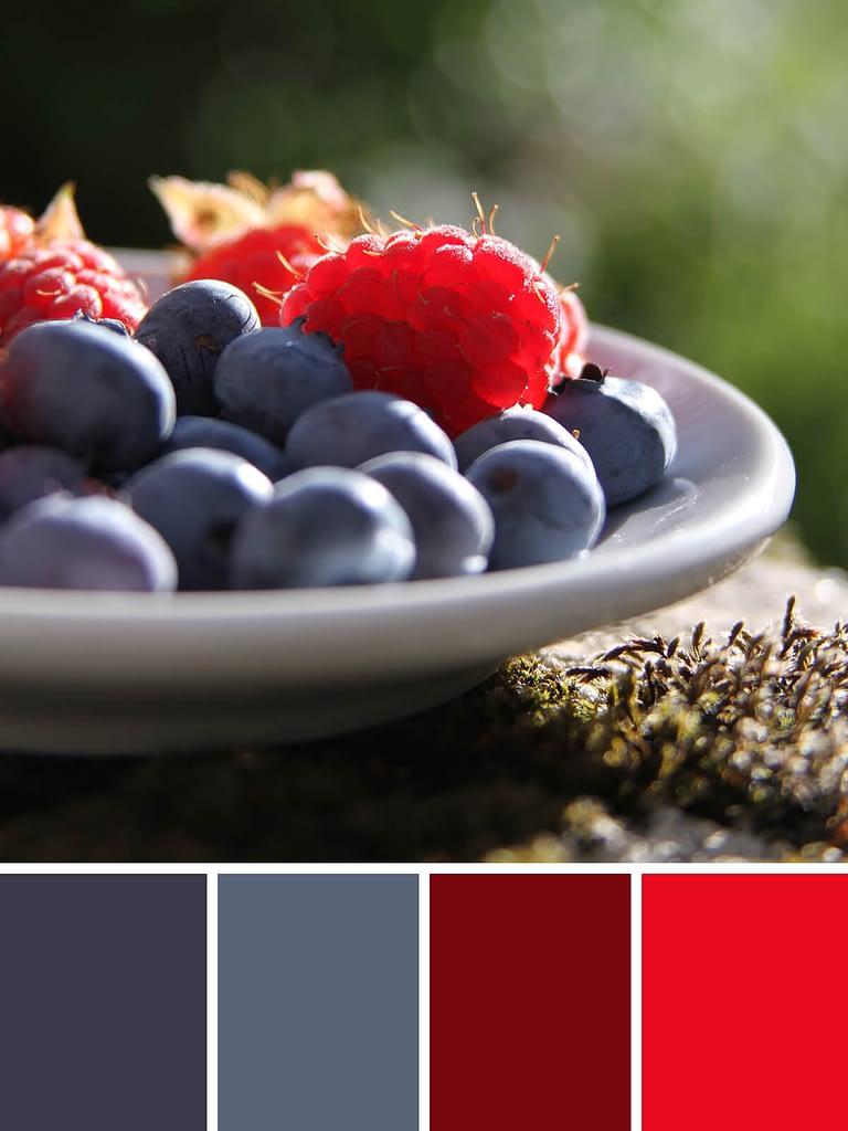 kleurschema's van zomers fruit