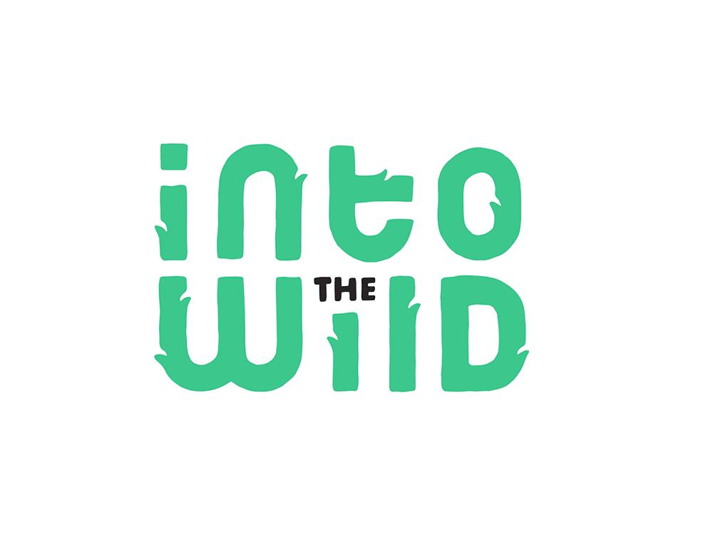 unieke lettertypes logo trend