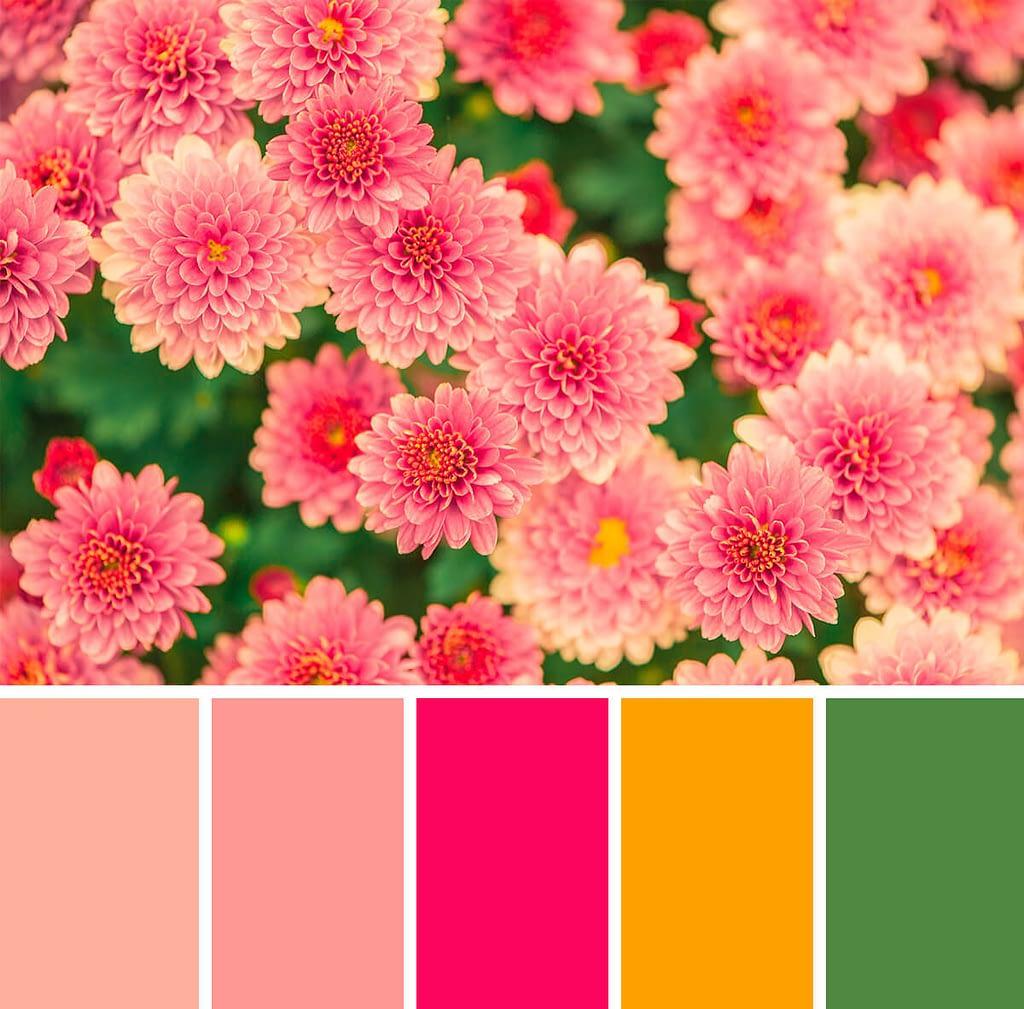 kleurenschema: bloemen
